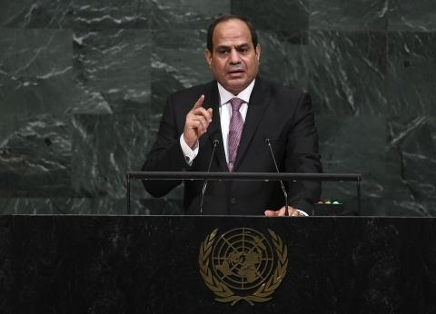 السيسي وعبدالله يؤكدان ضرورة تكثيف جهود المجتمع الدولي لمواجهة الإرهاب