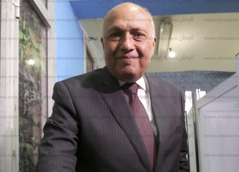 """وزير الخارجية عن """"يوم إفريقيا"""": نشعر بالإخاء والتضامن مع شعوب القارة"""