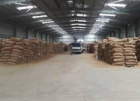 محافظ القليوبية يناشد المزراعين الالتزام بتوريد القمح للشون والصوامع