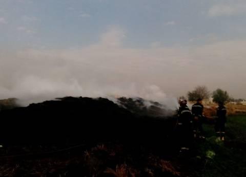 """""""البيئة"""": انتهاء حريق موقع تجميع قش الأرز في القليوبية """"دون إصابات"""""""