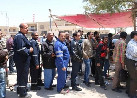 """""""عمال السخنة"""" يتصدرون المشهد بلجان الاستفتاء بالسويس"""