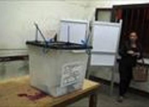 رئيس لجنة انتخابية: نسبة التصويت في جميع دوائر طلخة لا تقل عن 22%
