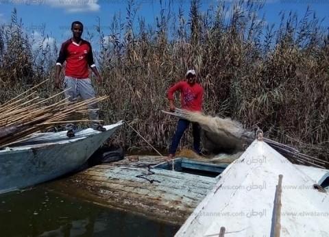 حملة لإزالة التعديات على بحيرة البرلس تضبط 39 قضية مختلفة