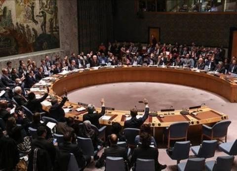 مجلس الأمن يدين الهجوم الإرهابي على الكنيسة البطرسية