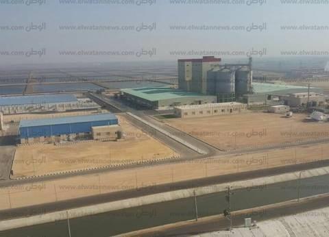 """""""البيئة"""": خفض 60% من مخلفات الصرف الصناعي على النيل"""