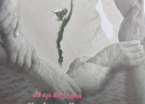 """""""مصر التعاونية بين النيل وعبقرية المكان"""".. أحدث إصدارات """"هيئة الكتاب"""""""