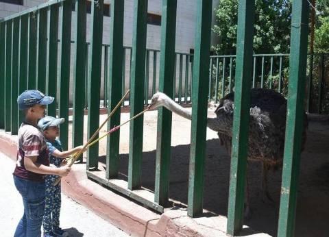 """""""الزراعة"""" تلغي الإجازة الأسبوعية لحدائق الحيوان حتى نهاية فبراير المقبل"""