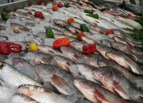 أسعار السمك اليوم الأربعاء 10-7-2019 في مصر
