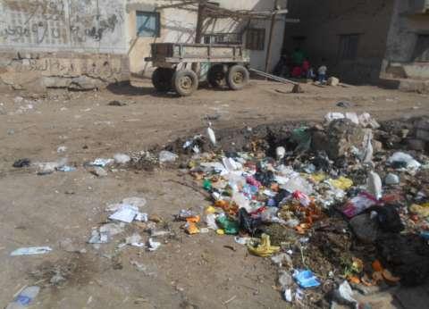 رفع 110 أطنان قمامة من شوارع دشنا في قنا
