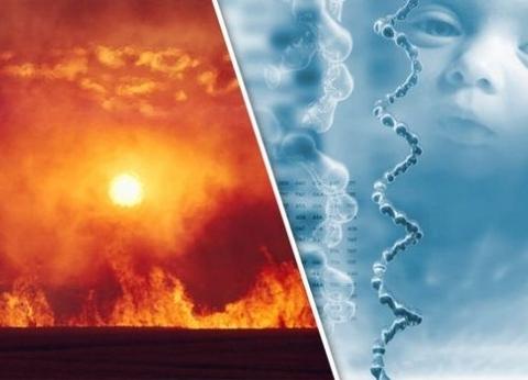 """""""أطفال معدلة وراثيا وتغير المناخ"""".. أبرز الأحداث العلمية في 2018"""