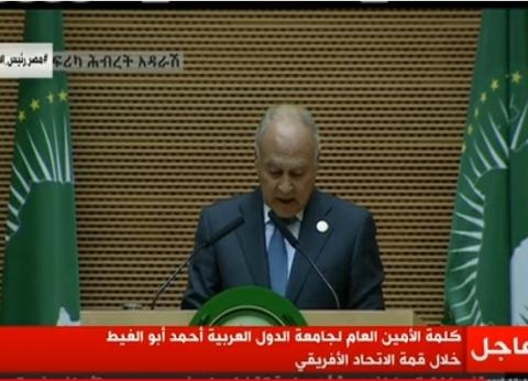 أبو الغيط يغادر جلسة قمة الاتحاد الإفريقي لسفره إلى لبنان