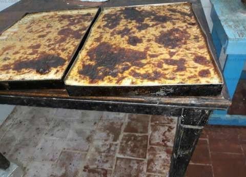"""""""صحة جنوب سيناء"""" تحرر 45 محضرا وتعدم 545 كيلو أغذية فاسدة بالطور"""