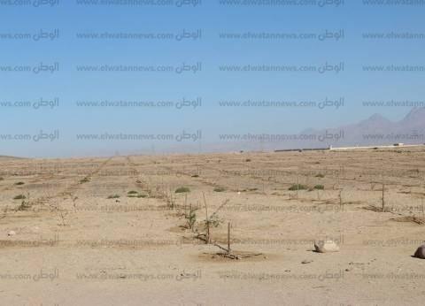 شكاوى من نقص مياه الري في القوصية بأسيوط.. ومزارعون: أراضينا مهددة بالبوار