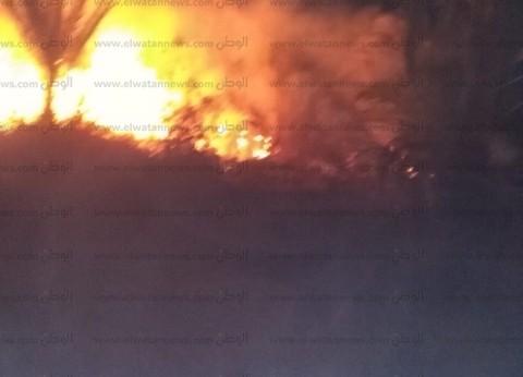 مصرع إمام مسجد ونفوق 18 رأس ماشية في حريق بحظيرة بالمنوفية