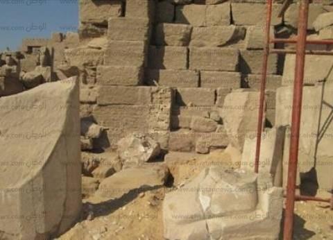 """""""آثار الإسكندرية"""": العثور على أعمدة وتيجان لطيور أثرية ترجع للعصر اليوناني"""