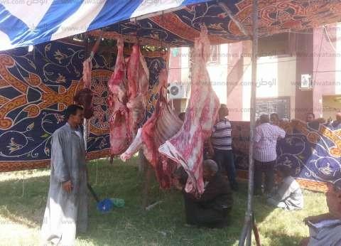 صور| الوحدة المحلية بالحامول تفتح شادرا لبيع اللحوم بـ100جنيه للكيلو