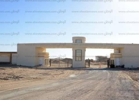 5 آلاف مصرى يشاركون فى بناء جامعة الملك سلمان
