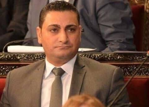 مهند الحاج علي: السوريون مستعدون للاستشهاد دفاعا عن وطنهم