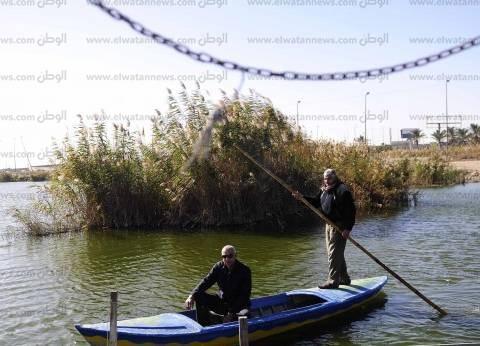 «مريوط»: بحيرة بلا سمك.. وصيادون يشكون نفاد صبرهم لقلة رزقهم