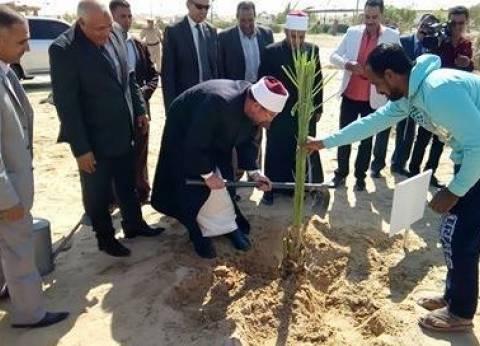 وزير الأوقاف يغرس نخلة بمنطقة مطار الخارجة في الوادي الجديد