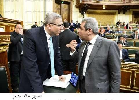 طلب إحاطة لاستدعاء وزير الخارجية وإعلان موقف مصر من ضرب سوريا
