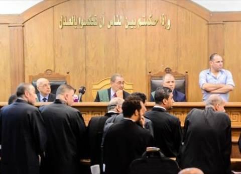 """ممثل النيابة في """"رشوة محافظ المنوفية"""" يطالب بتطبيق مواد الاتهام"""