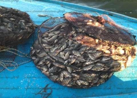بالصور  حملة لإزالة التعديات على بحيرة البرلس وضبط لنش خشبي مخالف