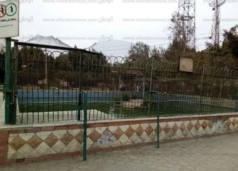 حديقة حيوان العبور بقلب المدينة.. «بدون حيوانات»