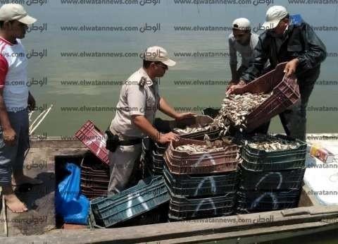 بالصور| ضبط 215 قضية متنوعة في حملة على بحيرة البرلس