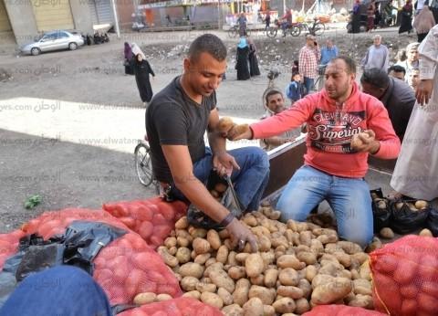 استقرار أسعار الخضراوات في سوق العبور.. والبطاطس تتراجع جنيها