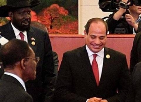 """""""2018"""".. عام الريادة المصرية لقارة إفريقيا في المحافل الدولية"""