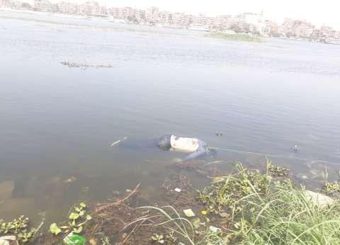 غرق طفل أثناء سباحته بنهر النيل في المنيا