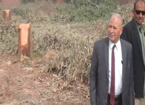 """""""زراعة الفيوم"""": إزالة تعديات على 727 فدانا منذ يناير 2011"""