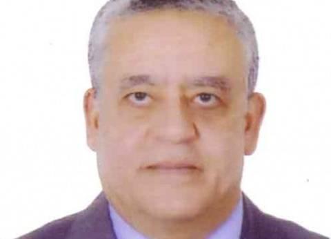 """حنفي جبالي رئيسا للمحكمة الدستورية خلفا لـ""""عبدالرازق"""""""