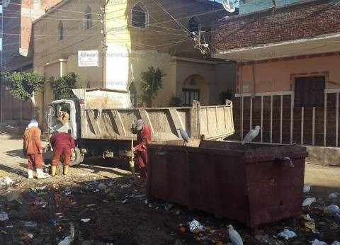 بالصور| حملة نظافة مكبرة لرفع الأتربة وإصلاح خط الإنارة بدسوق في كفرالشيخ