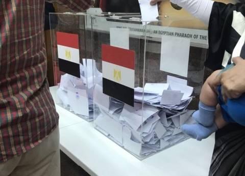 """""""الخارجية"""": من حق مزدوجي الجنسية التصويت طالما يحملون جواز سفر مصري"""