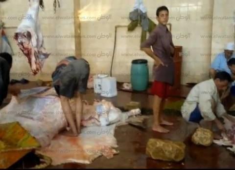 """""""الزراعة"""": تشديد الرقابة على المجازر قبل عيد الأضحى"""