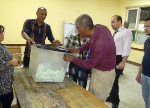 بالصور| بدء فرز الأصوات في اللجان الانتخابية بأسوان