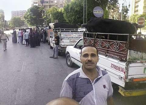 مظاهرة بـ«الماشية» أمام محافظة أسيوط بسبب تعطل المجزر الجديد