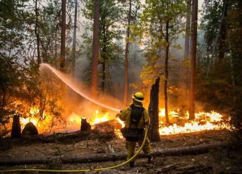السيطرة على حريق بمزرعة تابعة لوزارة الزراعة بسوهاج
