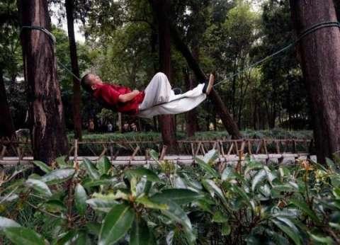 دراسة: البيئة الطبيعية المحيطة تساعد على تحسن النوم