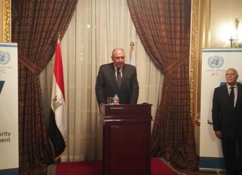 شكري يلتقي وزير خارجية اليونان في القاهرة