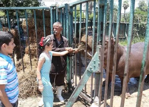 ثانى أيام العيد.. 200 ألف زائر لحدائق القاهرة.. و«الحيوانات» تخاطب الفنادق المحيطة لمنع الألعاب النارية تحسباً لتكرار الحريق