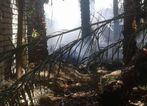 السيطرة على حريق مزرعتين في العبور بالقليوبية