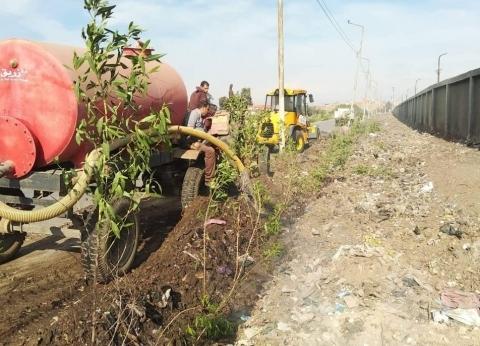 """محافظ الغربية يأمر برفع 500 طن قمامة وزرع 500 شجرة بـ""""الدفراوية"""""""