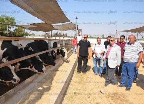 محافظ الإسماعيلية يتفقد محطة التسمين والإنتاج الحيواني قبل عيد الأضحى