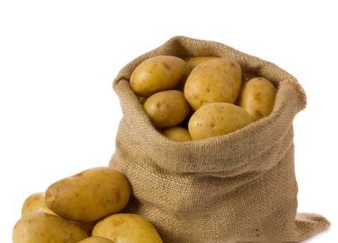 «الزراعة»: طفرة كبيرة فى صادرات البطاطس المصرية بالموسم الحالى