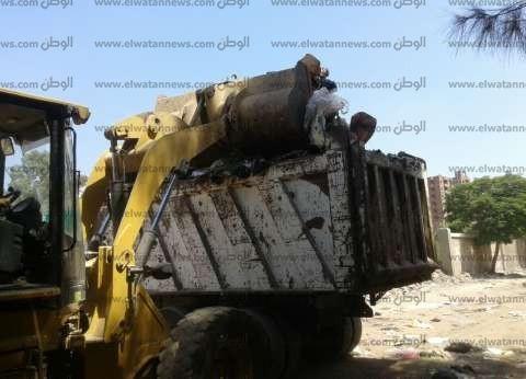 رفع القمامة والمخلفات من شوارع العامرية في الإسكندرية