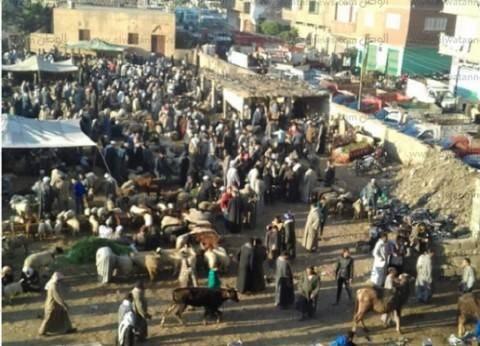 سوق مواشى «ديرب نجم»: بؤرة تلوث ومرتع مخدرات ومطالب شعبية بنقله