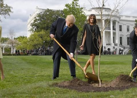 ماكرون وترامب يزرعان شجرة البلوط في حديقة البيت الأبيض